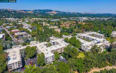 Walnut Creek CA Condo/Townhouse New: $365,000
