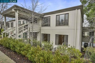 Walnut Creek Condo/Townhouse New: 1144 Singingwood Ct #8