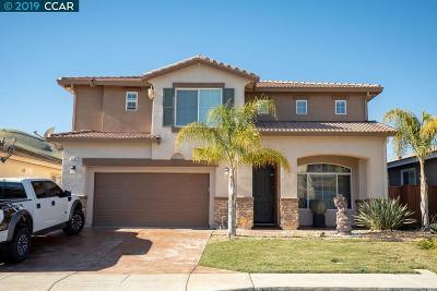 Contra Costa County Single Family Home New: 2452 Vallarta Dr