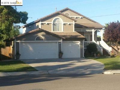 Oakley Single Family Home New: 193 Century Way