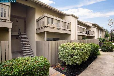 Walnut Creek Condo/Townhouse New: 2562 Walnut Blvd #85