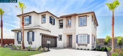 Oakley Single Family Home New: 3834 Pato Lane
