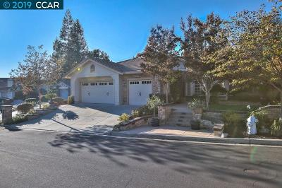 Danville CA Single Family Home New: $1,343,000