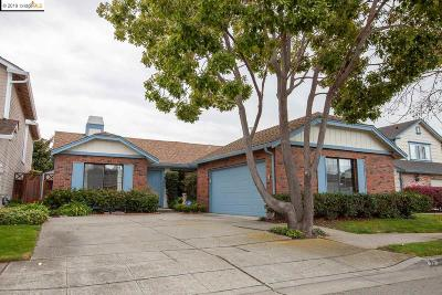 Alameda County Single Family Home New: 28 Sandpiper Place