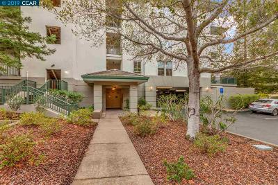 Walnut Creek Condo/Townhouse Pending Show For Backups: 5910 Horsemans Canyon Dr #4B