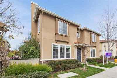 Hayward Single Family Home Active - Contingent: 549 Ravenna Way