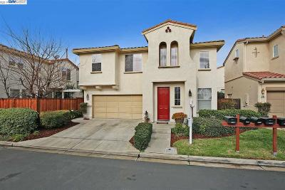 Dublin Single Family Home New: 5199 San Viciente Loop
