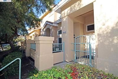 Fremont CA Condo/Townhouse New: $1,100,000