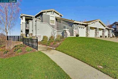 Walnut Creek Condo/Townhouse New: 2812 Saklan Indian Drive