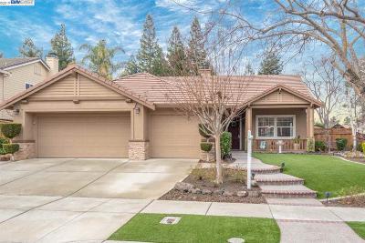 Livermore CA Single Family Home New: $925,000