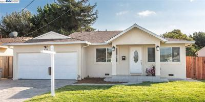 Fremont Single Family Home New: 36233 Pizarro Drive