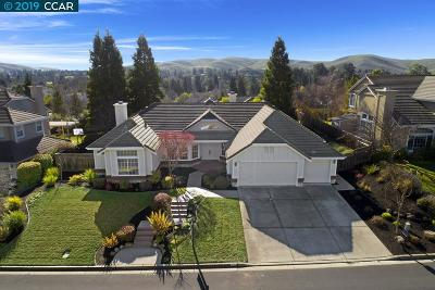 Danville CA Single Family Home New: $1,395,000