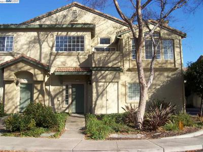 Pleasanton Rental For Rent: 4104 Lucca Ct.