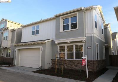 Newark Single Family Home For Sale: 37880 Hickory Street