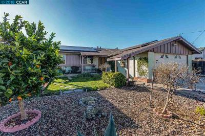 Concord Single Family Home For Sale: 2518 Saratoga Ave