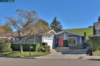Danville Single Family Home For Sale: 672 Paradise Valley S