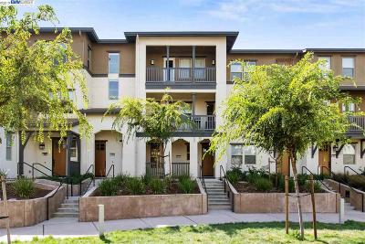 Alameda Condo/Townhouse For Sale: 491 Diller Street
