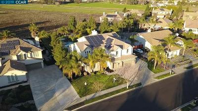 Brentwood Single Family Home Active - Contingent: 1449 Pinegrove Way