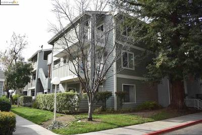 Fremont Condo/Townhouse Active-Reo: 3371 Baywood Ter #313