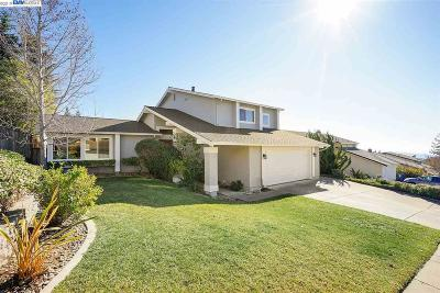 Castro Valley Single Family Home Active - Contingent: 6043 Skyfarm Drive