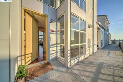 Oakland Condo/Townhouse For Sale: 1007 41st St #441