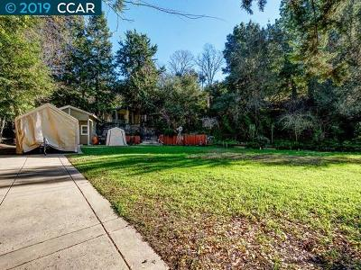 Danville Single Family Home For Sale: 632 El Pintado Road