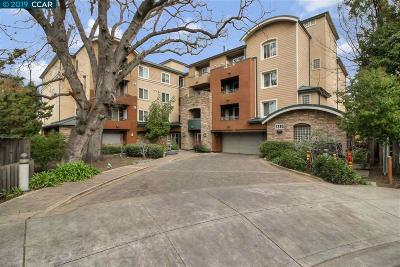 Walnut Creek Condo/Townhouse For Sale: 1310 Creekside Dr #209