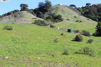 Castro Valley Residential Lots & Land For Sale: 6301 Crow Canyon Rd