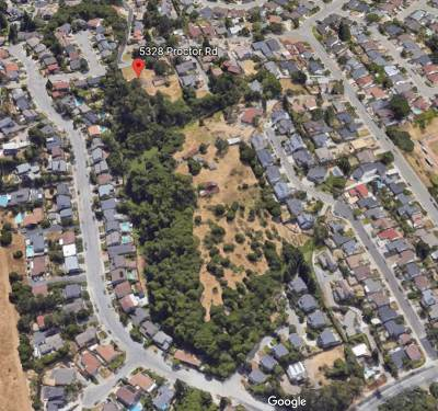 Castro Valley Residential Lots & Land For Sale: 5328 Proctor Rd