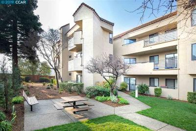 Walnut Creek Condo/Townhouse Pending Show For Backups: 1201 Alta Vista Dr #204 #204