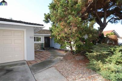 Fremont Single Family Home For Sale: 42047 Paseo Padre Pkwy