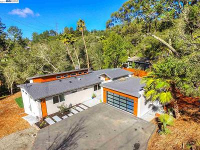 Orinda Single Family Home For Sale: 238 Hall Dr