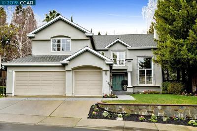 Danville Single Family Home For Sale: 121 Rassani Dr