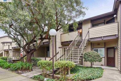 San Leandro Condo/Townhouse Pending Show For Backups: 536 Sterling Dr