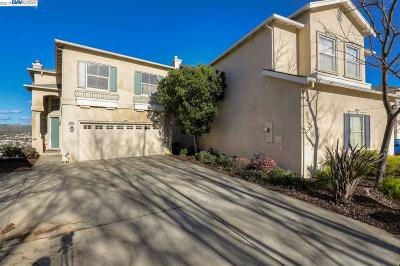 Castro Valley Single Family Home For Sale: 19824 John Dr