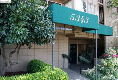 Oakland Condo/Townhouse For Sale: 5343 Broadway Ter #406