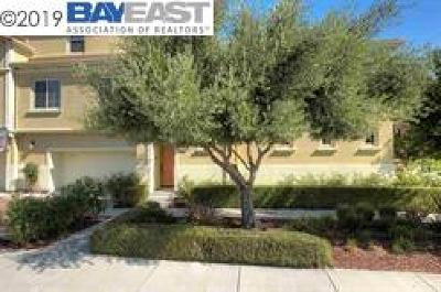 Livermore Rental For Rent: 2811 Quarry Hill Ave #4