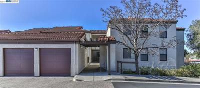 Hayward Condo/Townhouse Pending Show For Backups: 21314 Gary Dr #101
