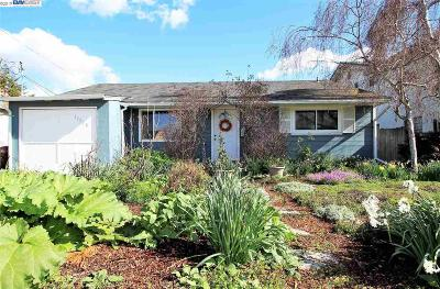 San Lorenzo Single Family Home Pending Show For Backups: 17328 Via Julia
