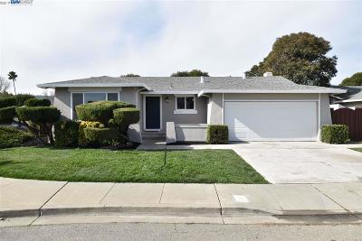 Pleasanton Single Family Home For Sale: 4606 Helpert Ct