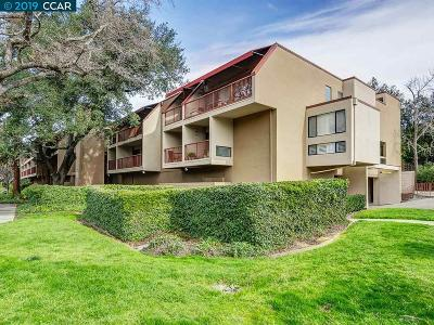 Walnut Creek Condo/Townhouse For Sale: 1600 Carmel Dr #15