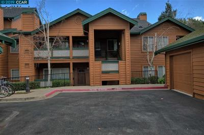 San Ramon Condo/Townhouse For Sale: 207 Stone Pine Ln