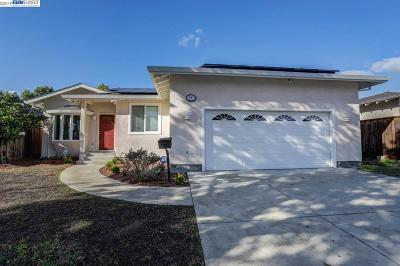 Single Family Home For Sale: 261 Camphor Ave