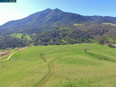 Contra Costa County Residential Lots & Land For Sale: 8925 Marsh Creek Rd