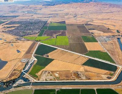 Livermore Residential Lots & Land For Sale: 5940 Lindemann Rd