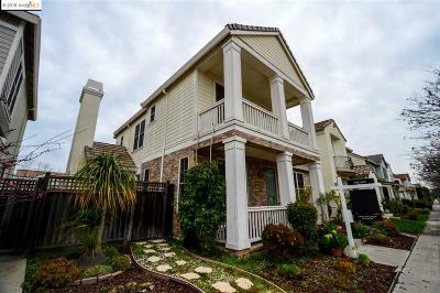 Alameda Single Family Home New: 369 Tucker Ave