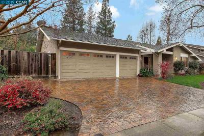 Walnut Creek Single Family Home For Sale: 1013 Rudgear Rd