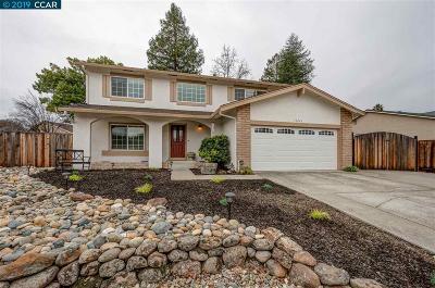 San Ramon Single Family Home New: 10049 Santa Rosa Ave