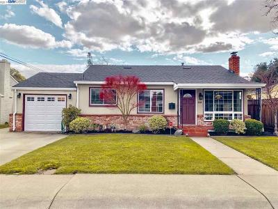 Castro Valley Single Family Home For Sale: 2359 Farley St