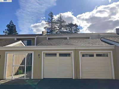 Milpitas Condo/Townhouse For Sale: 164 Marylinn Dr